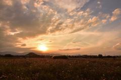 古都に沈む夕陽②