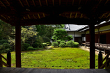 本堂からの庭園
