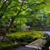 宝厳院 深緑の庭園