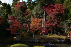 嵯峨釈迦堂 忠霊塔の紅葉