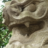 奥沢神社-11