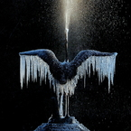 NIKON COOLPIX A900で撮影した(凍てつく鶴)の写真(画像)