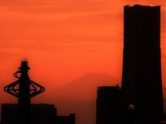 ランドマークタワーと富士山