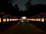 大國魂神社くり祭-5