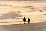 冬の海岸で