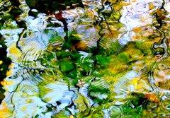 光と水の幻想