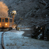 冬の樽見線