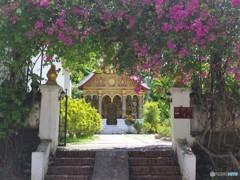 南国の寺院