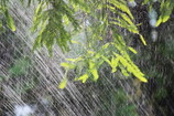 Shower~