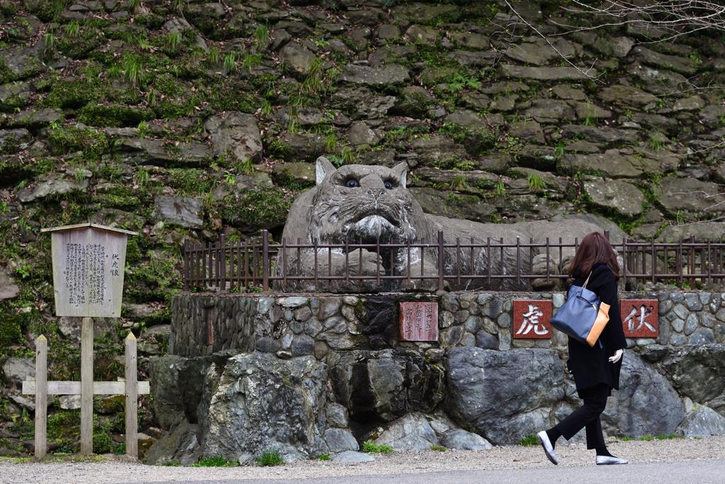和歌山城に住む虎