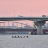 浜寺運河にて(2)