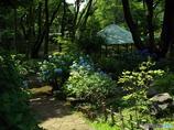 日本庭園16