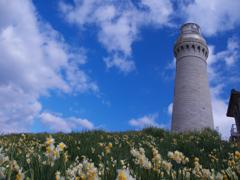 角島灯台・5
