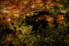 夜の永観堂2