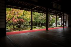 秋の圓光寺2