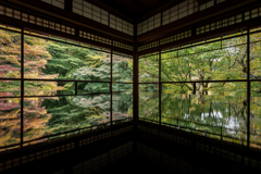 秋の瑠璃光院1