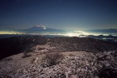 達磨山(西伊豆)