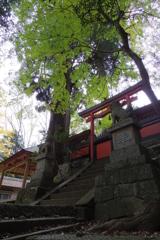 興ヶ原町 天満神社