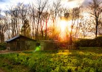 NIKON NIKON D700で撮影した(田舎の風景)の写真(画像)