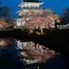 Sakura Reflection そのいち。
