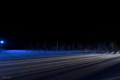 青い池 ライトアップ そのいち。