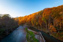 川と紅葉 そのいち。