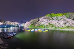 千鳥ヶ淵ボート場。
