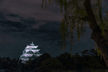 地元散策 ~名古屋城~