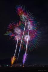 田原祭り ~七色たんぽぽ~