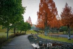 秋を感じる公園