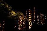 竹灯りの宵4