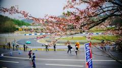 2018年4月GT開幕戦岡山①_桜とサーキット
