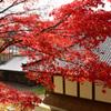 清水寺(せいすいじ )①