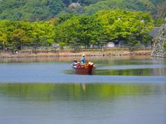 姫路城 新緑3