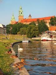 水鳥遊ぶ川畔~ポーランド Wawel Castle