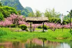 世外桃源~中国 Shangri-la Scenic Spot