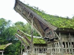 高床式舟形家屋~インドネシア Tongkonan