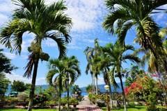 君知らずや、椰子の葉そよぐ庭~インドネシア Tropical garden