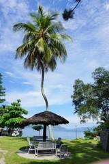 君知るや、椰子の葉そよぐ島~インドネシア Tropical garden
