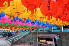 色提灯~韓国 Colourful lanterns