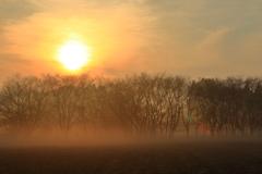 かすむ朝陽