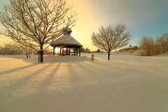 雪化粧の朝