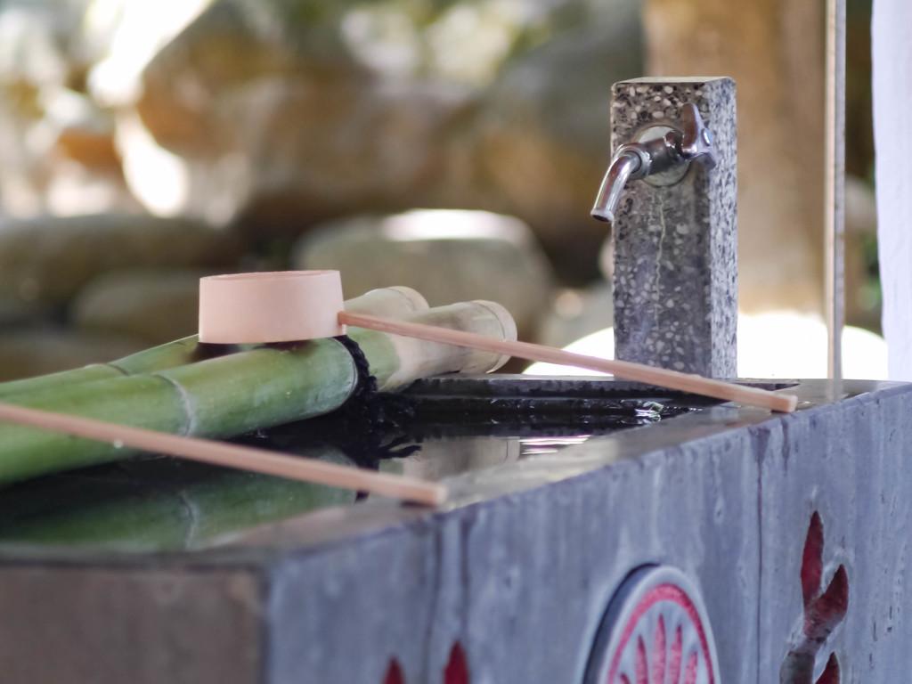 初夏、学生街の神社で涼む