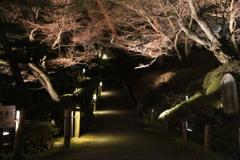 霞が城公園#4