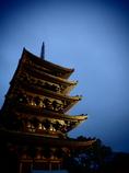 奈良公園 興福寺