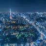 TOKYO BLUE NIGHT