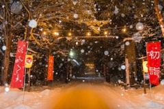 奥へと誘う、雪国初詣