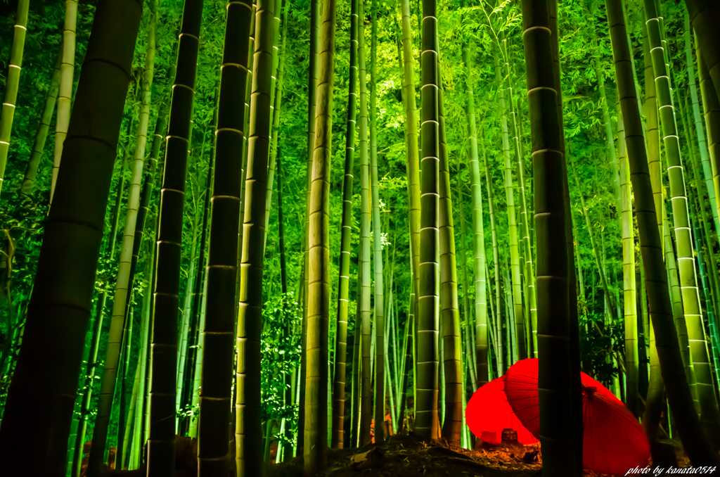 The Tale of the Bamboo-Cutter~竹取物語~