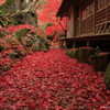 秋の隠れ里~秘密の小径