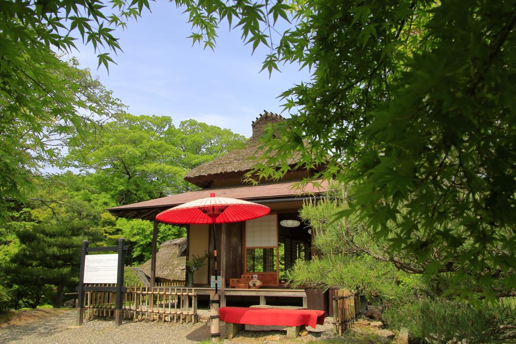 初夏の茶屋
